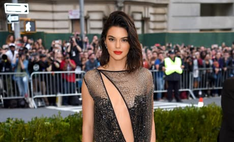 Kendall Jenner at 2017 MET Gala