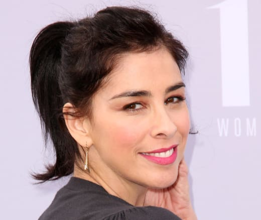 Sarah Silverman Red Carpet Pic