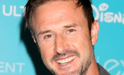 Courteney Cox and David Arquette Split; Jasmine Waltz to Blame?
