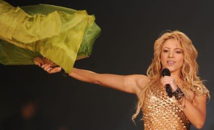 Shakira Named to Presidential Education Advisory Council