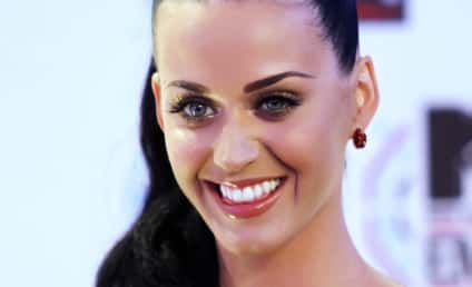 Katy Perry Tweets Approval of Glee Homage