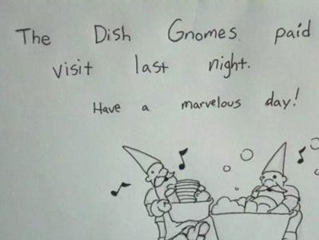 Dish Gnomes