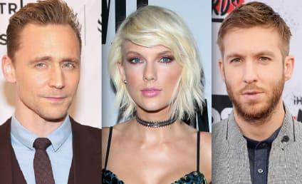 2016 Celebrity Breakups: Who Entered Splitsville?