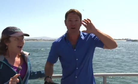 BBC Reporter Loses Mind Upon Seeing Blue Whale: It's So Big!