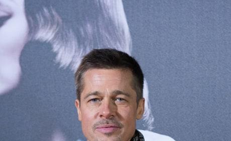 Brad Pitt: Allied Premiere Image