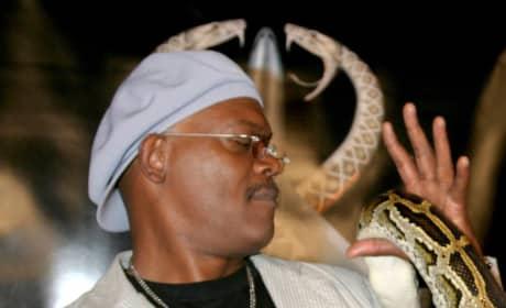 Samuel L. Jackson And Snake