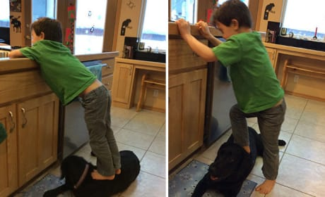 Sarah Palin's Son Steps on Family Dog