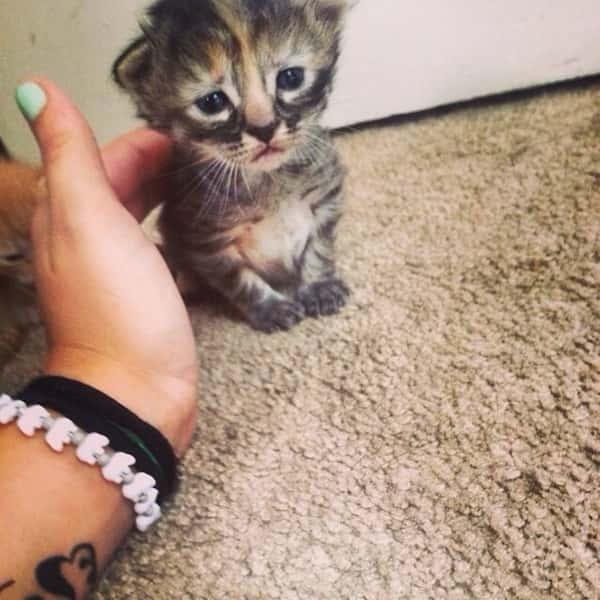 Cheer Up, Little Guy!