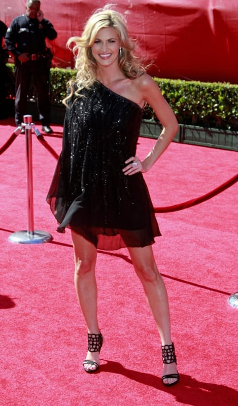 17 Insanely Hot Photos of Erin Andrews - The Hollywood Gossip