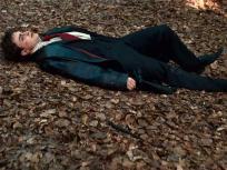 Get Up, Harry!