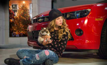 Grumpy Cat Movie: First Look!