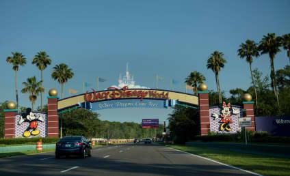 Disney World Tragedy: Little Boy Dragged Into Water By Alligator