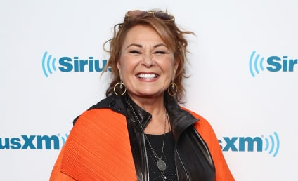 Roseanne Gets All Racist on Twitter, Prompts Sitcom Cancelation