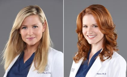 Grey's Anatomy: Fans to Boycott Series After Shocking Firings?