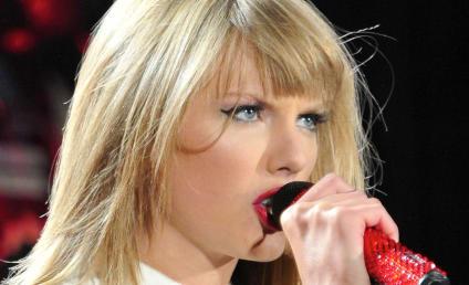 Taylor Swift and Matthew Gray Gubler: New Couple Alert?!