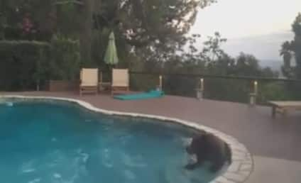 Bear Escapes California Heat Wave, Takes Dip in Family Pool