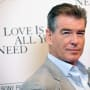 Pierce Brosnan Stopped By TSA, Caught With Knife!
