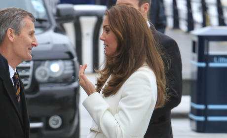 Kate Middleton, profile, 7 months pregnant