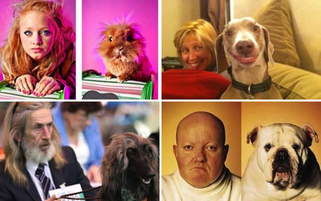 11 pets who look just like their owners a hairy situation