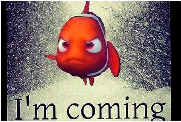 Winter Storm Nemo