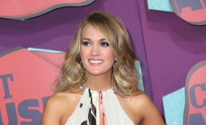 2014 CMT Music Awards Winners: Who Took Home the Gold?