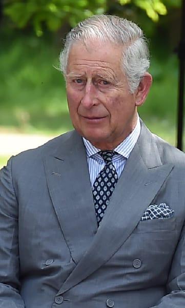 Prince Charles Snapshot