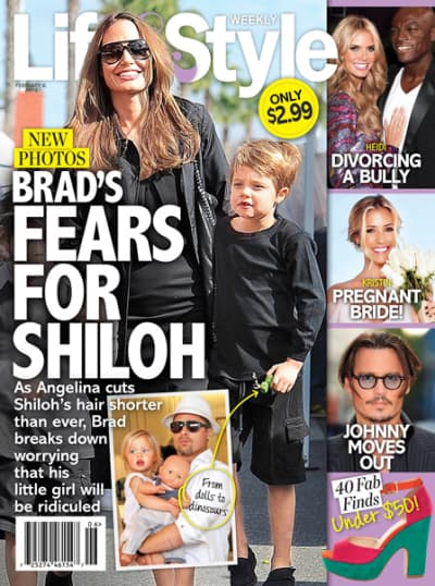 Brad Pitt So Worried About Shiloh Being Bullied The