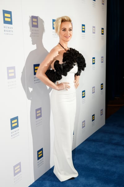 Katy Perry Human Rights Campaign Gala