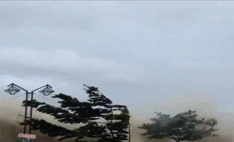 Typhoon Haiyan Kills Thousands in the Philippines