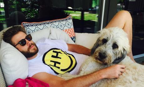 Liam Hemsworth Dog Instagram Pic