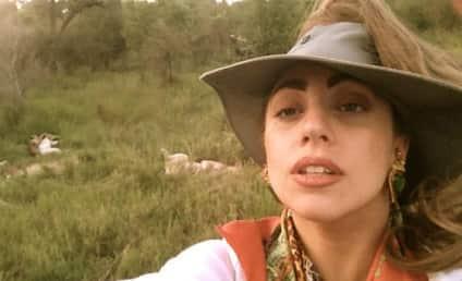 Lady Gaga Goes Wild ... Safari Style
