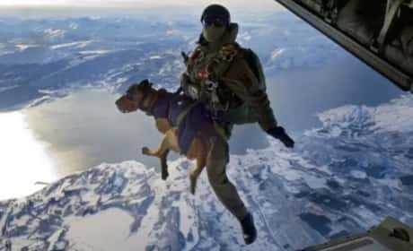 12 Military Photos That Will Leave You in Awe