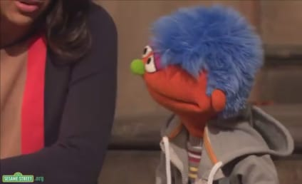 Sesame Street Goes to Jail: Big Bird in the Big House