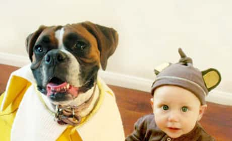 Dog and Kids Wear Matching Halloween Costumes