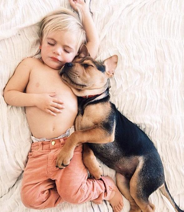 Baby and Dog Melt the Internet