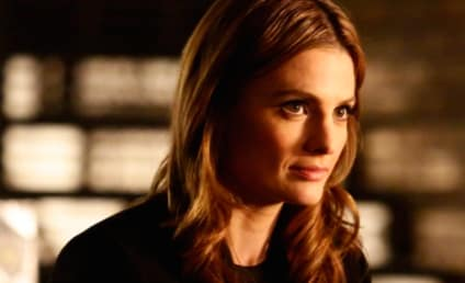 Stana Katic: Basically Fired from Castle!