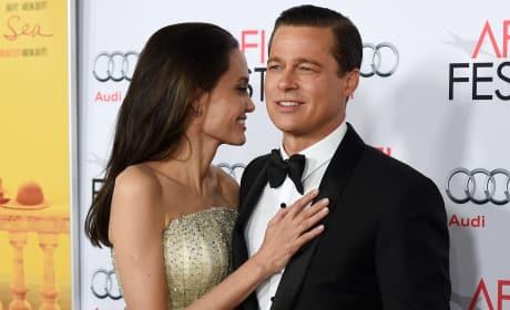 Angelina Jolie Divorces Brad Pitt, Celebrities React in SHOCK