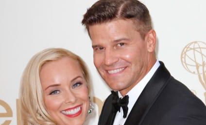Jaime Bergman May Sue David Boreanaz Mistress; Actor Accuses Gloria Allred of Extortion