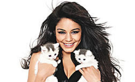 Vanessa and Cats