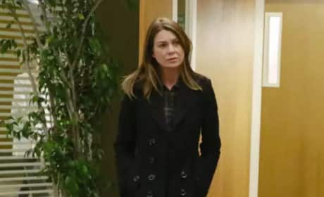 Meredith in Mourning