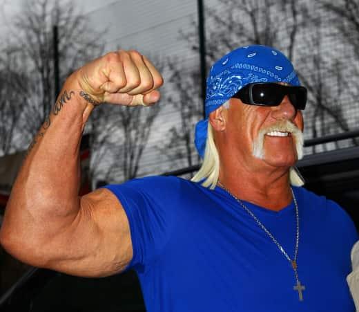 Hulk Hogan , Bicep