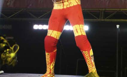 Linda and Hulk Hogan Divorce: A Long Time Coming