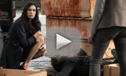 Watch The Blacklist Online: Check Out Season 3 Episode 21