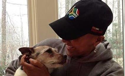 Robin Roberts Celebrates Milestone with Pet Dog