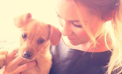 Lauren Conrad Adopts Cutest Puppy Everrrrrrrrrrr