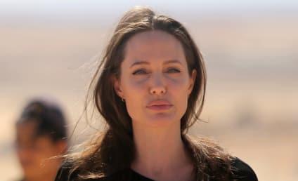 Angelina Jolie to Brad Pitt and Jon Voight: STFU!