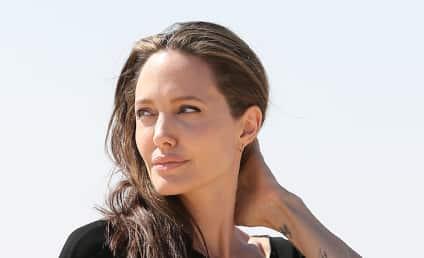 Angelina Jolie: I Want to Take the Kids FAR Away From Brad!