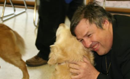 Dogs Sent to Newtown, Provide Comfort for Families of Victims