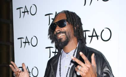 Snoop Lion: Down with His Gay Homies!