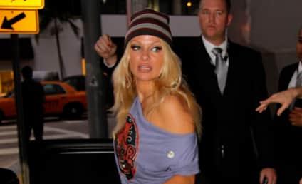 Pamela Anderson's Kids Enroll in Sex Tape 101